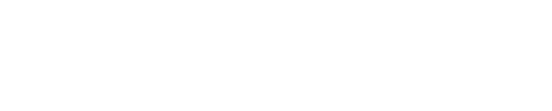 Pierre de Lyon